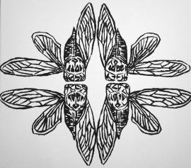 cicada_clover