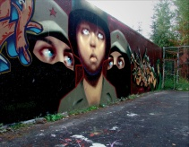 Spray paint on wall (Langley, Canada)