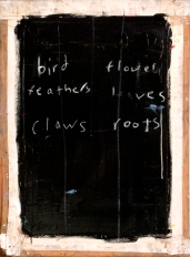 oneal_feathers_web