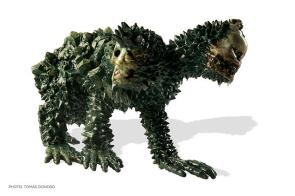 Fukushima Pet