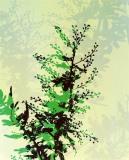 Doug_Fogelson_Plant