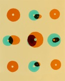 Doug_Fogelson_Shell_Urchin