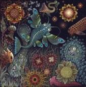 STAR FISH 2015 - 20 X 20 IN