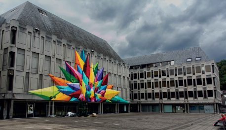 Crystalised Flower - Liege.Belgium.2014