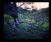 MMarshall-slideshow-Maria Marshall-21