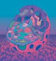 WOMB - cell, 550x600, digital, 2017