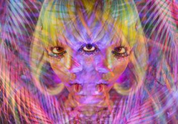Acid Palm_1_Alex Markow