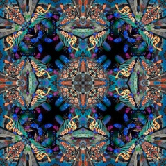 James Stanford Binions A-Variations low res