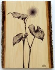 Graceful_Ballpoint on Wood
