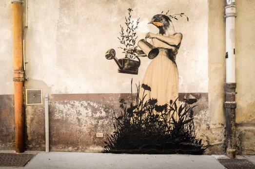 16-Nyha-migratrice-qui-fait-le-printemps_ChalonsurSaone_2019